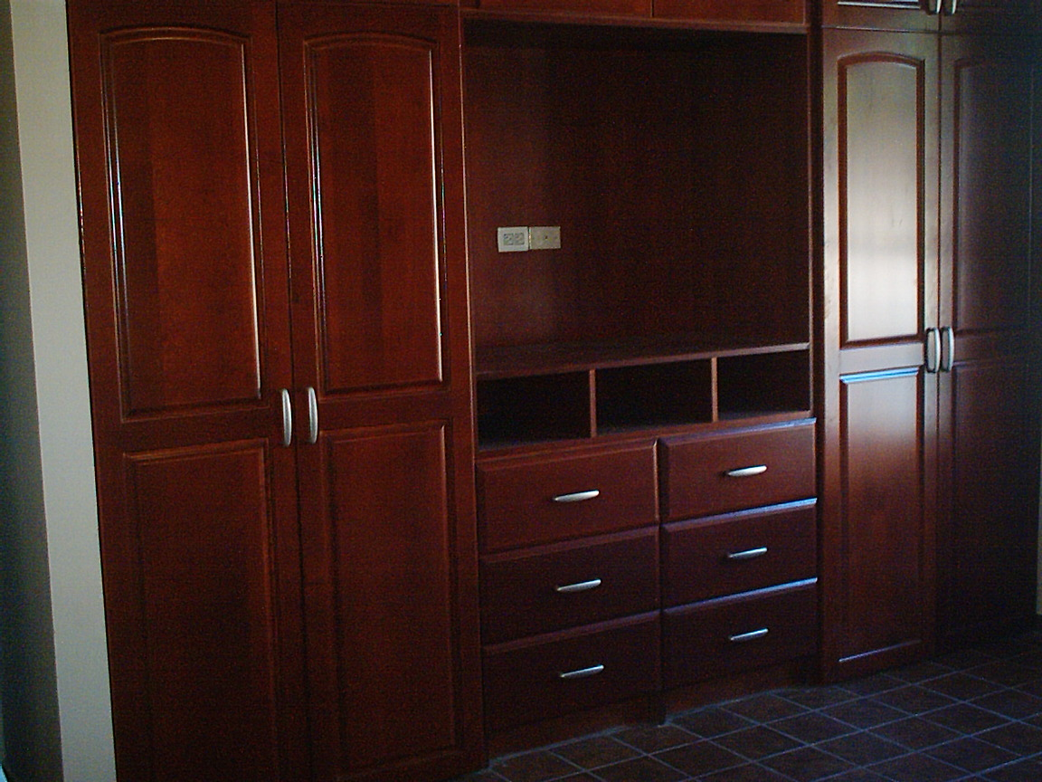 Closet con mueble para TV de madera de Maple con figura Oval en color